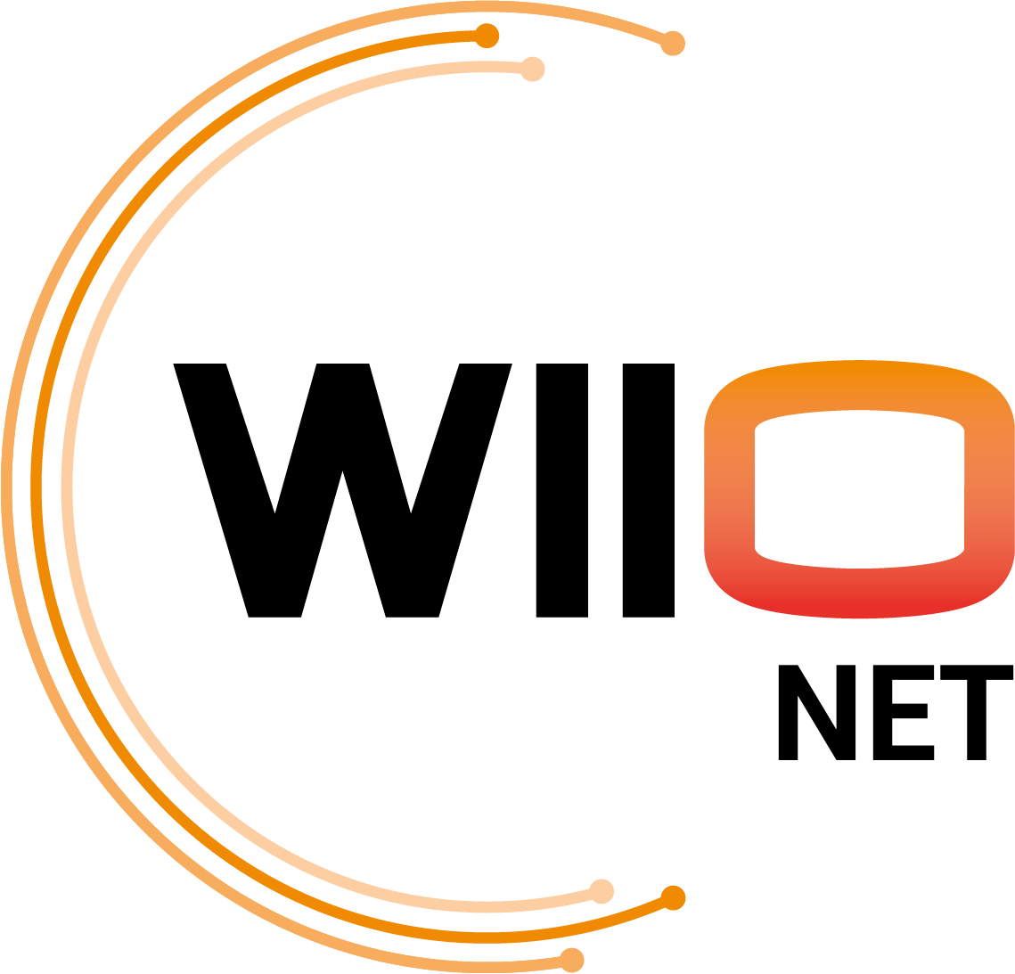LOGO WIIO NET copy